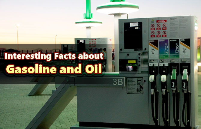 Photo of Interesting Facts about Gasoline and Oil